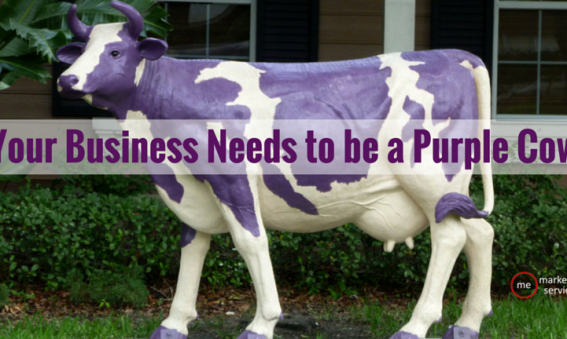 Your Business Needs to be a Purple Cow